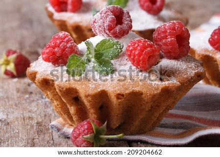 Raspberry Cupcake with mint and sugar powder closeup on wooden board horizontal   - stock photo
