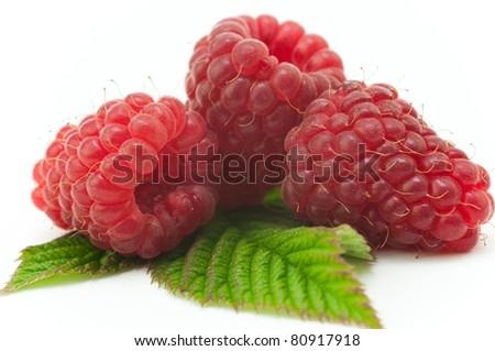 Raspberry fruit - stock photo