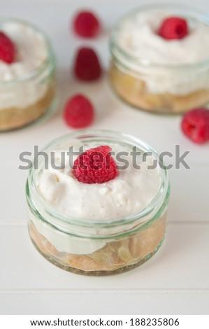 Raspberry Tiramisu dessert  - stock photo
