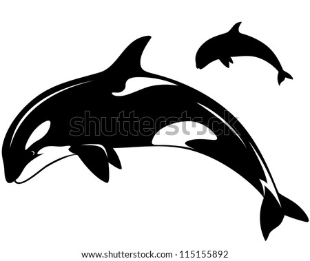 raster - killer whale illustration - black and white outline and silhouette (vector version is available in my portfolio) - stock photo