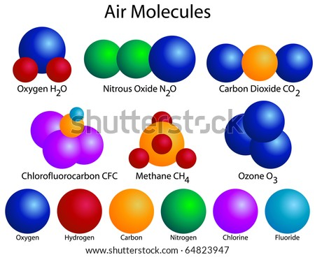 an experiment on finding the molecular weight of a myoglobin molecule Purifying and determining the molecular weight of amylase from  between the size of the molecule and the volume  in this experiment you will use a .