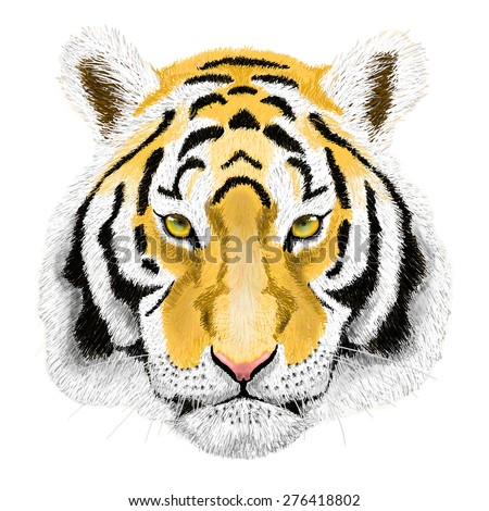 Raster Portrait of a Tiger. Beautiful face big cat. - stock photo