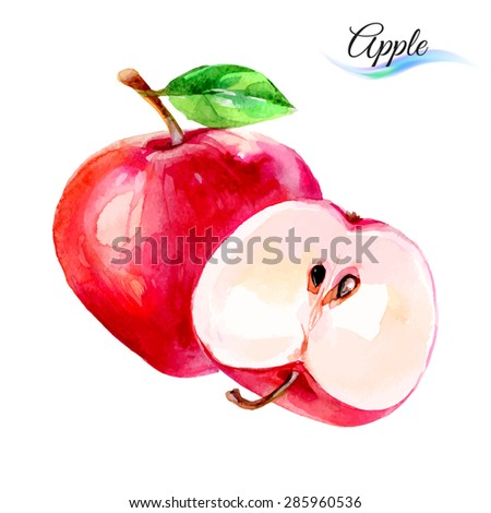 Raster version. Apple drawing watercolor isolated on white background  - stock photo