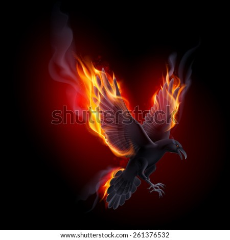 Raster version. Black raven flying in the flame on the black background