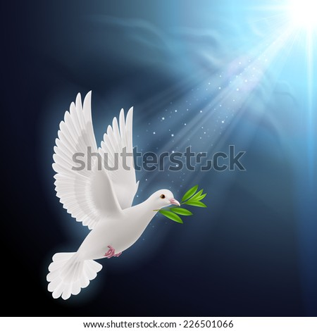 Raster version. Dove of peace flying with a green twig after flood on a dark background  - stock photo