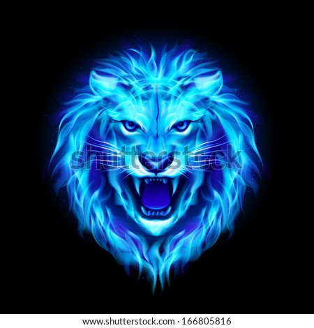 Raster version. Head of aggressive blue fire lion isolated on black background. - stock photo