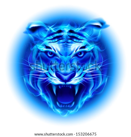 Raster version. Head of fire tiger in blue. Illustration on white  background.