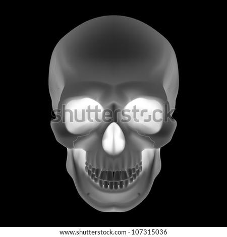 Raster version. Human Skull. Black and White illustration for design - stock photo