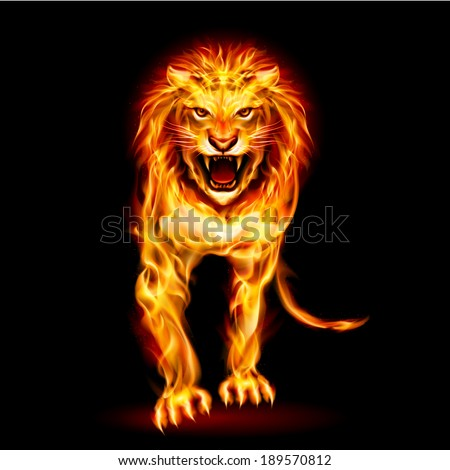 Raster version. Illustration of fire lion isolated on black background - stock photo
