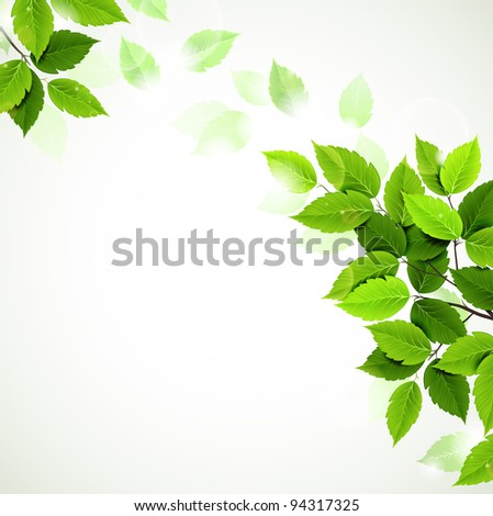raster version of branch with fresh green leaves - stock photo