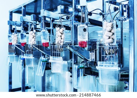 Rats in metabolic cages. In the laboratory. Blue filter. - stock photo