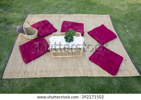 rattan mat, flowers in rattan basket, tree, cushions, rattan basket, white cloth and tree are ready for picnic - stock photo
