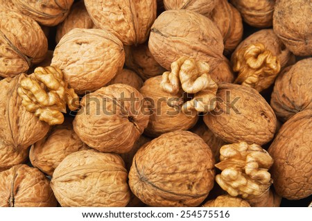 raw and dried walnut as a texture  - stock photo