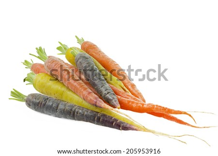 Raw carrots with different colors on white background - stock photo