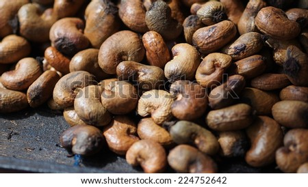 raw cashews in the shell - stock photo