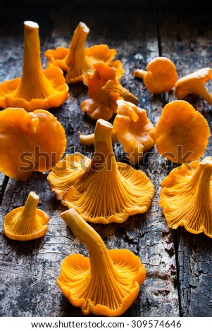 raw chanterelles closeup on wooden background - stock photo