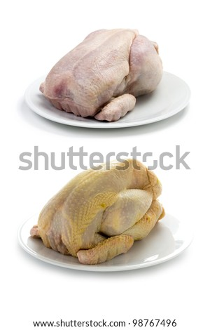 raw chicken factory farmed and free range organic corn fed comparison isolated on white background - stock photo