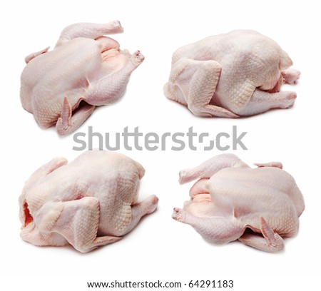Raw chicken set isolated on white background - stock photo