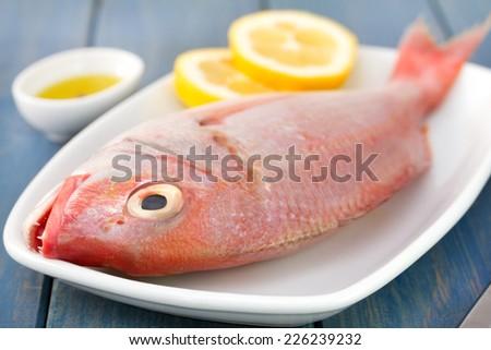 raw dish with lemon - stock photo