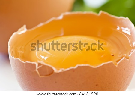 Raw Egg - stock photo