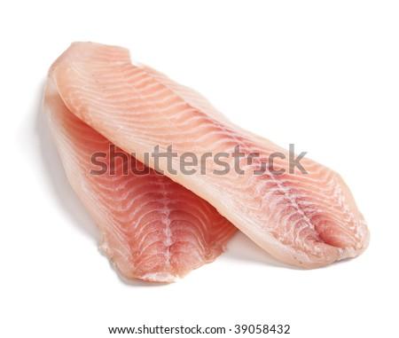 Raw Filleted Tilapia Fish on white - stock photo