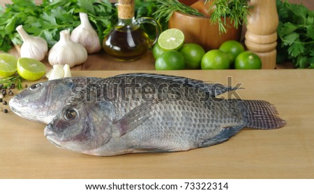 Raw fish called tilapia on cutting board surrounded by spices, herbs and seasonings (Selective Focus, Focus on the head and the body of the first fish) - stock photo