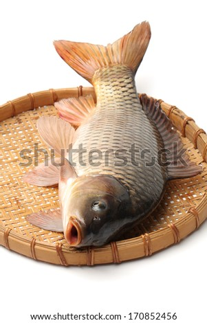 Raw fish carp on white background