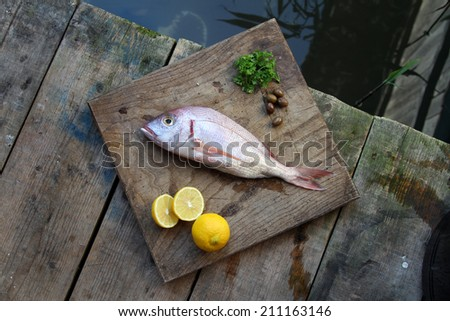 raw fish on a wooden background - Common dentex, dog�s teeth - stock photo