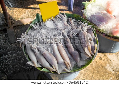 Raw fishes in the market - stock photo