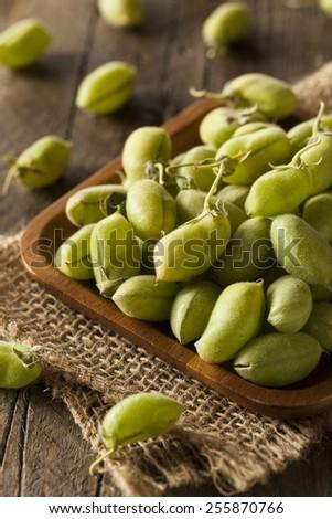 Raw Fresh Organic Green Garbanzo Beans in a Bowl - stock photo