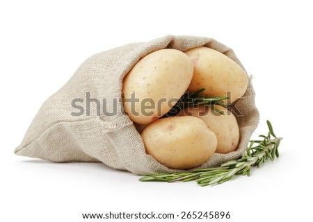 raw fresh potatoes with rosemary in burlap bag isolated on white - stock photo
