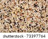 Raw grains background, mixed with 12 different grains - stock photo