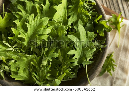 Raw Green Organic Baby Kale in a Bowl