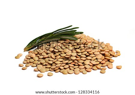 Raw lentils with rosemary isolated on white background - stock photo