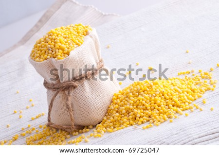 raw Millet in small sack - stock photo