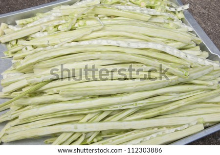 Raw moringa thai herb - stock photo