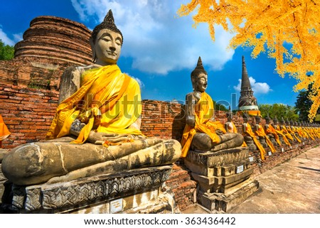 Raw of Buddha Statues in Ayutthaya, Thailand, - stock photo