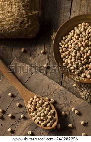 Raw Organic Garbanzo Beans in a Spoon - stock photo