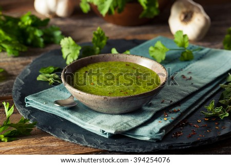 Raw Organic Green Chimichurri Sauce Ready to Use - stock photo