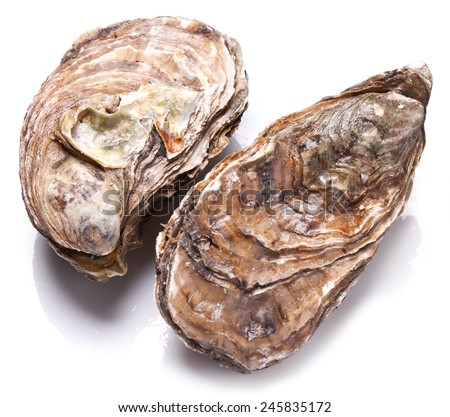 Raw oyster on a white background. - stock photo