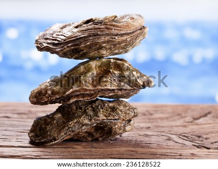 Raw oyster on wood. Sea at the background.  - stock photo