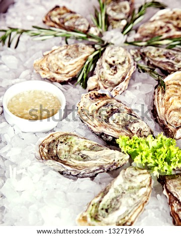 Raw oyster served in ice with lettuce and sauce - stock photo