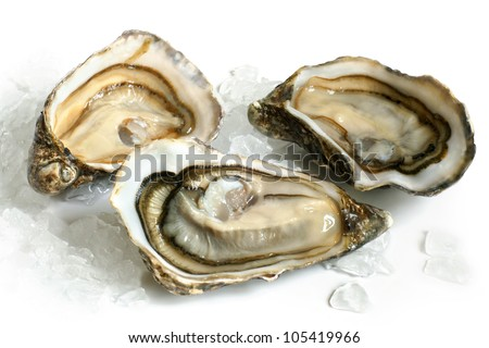 Raw oysters with ice on a white background - stock photo