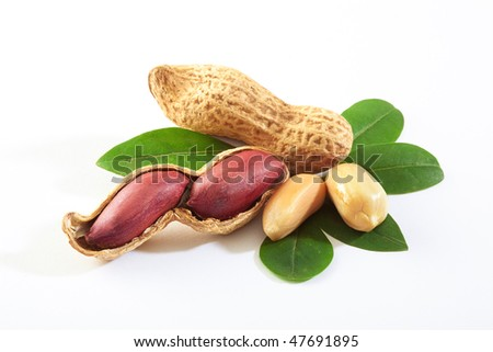 Raw peanuts in the nutshell - stock photo