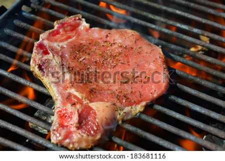 raw pork meat on grill - stock photo