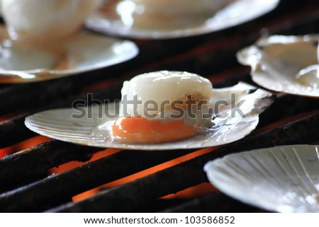 Raw queen scallops on grill - stock photo