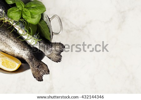 Raw rainbow trout with lemon, herbs and spices - stock photo