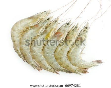 Raw Shrimps on white background - stock photo