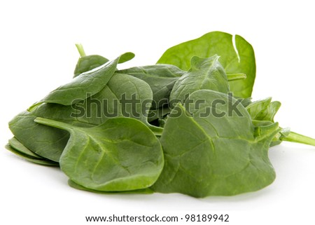 Raw Spinach Leaves in Studio on White Background