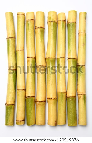 Raw Sugar cane isolated on white - stock photo